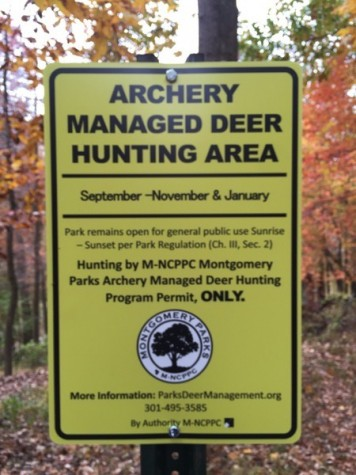 Hunters work to control deer population in woods behind school