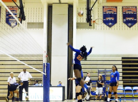 Volleyball bumps up enthusiasm after tough losses