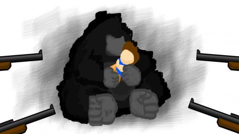 Recent shooting of gorilla is result of poor planning, inhumane captivity
