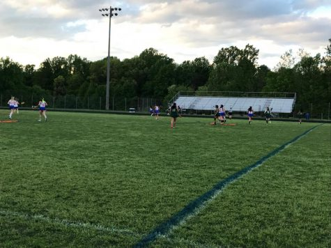 Girls lacrosse looks to tame Cougars in first round of playoffs tomorrow