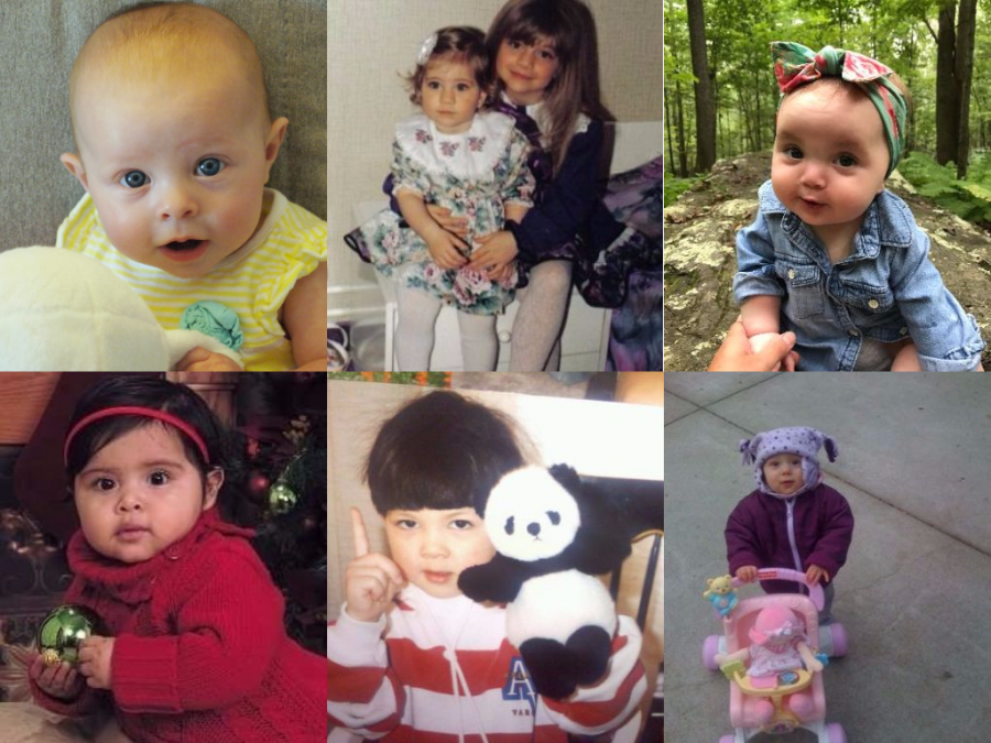 Whose babies are these? Teacher Edition