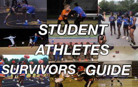 Wolverine student athlete survival guide