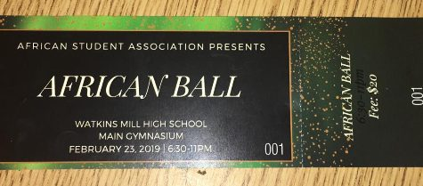 Tickets now on sale for WMHS' third annual African Ball