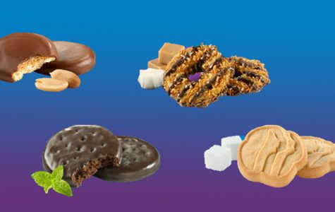 Girl Scout Cookie guide — the best, the worst and the randomly expensive