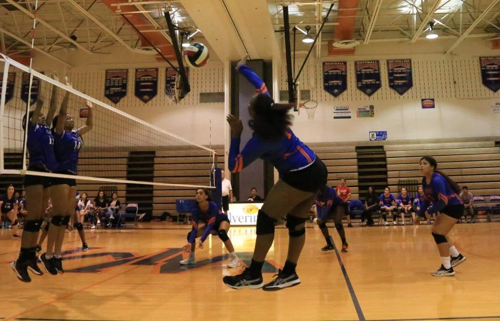 Junior Precious Fraizer hits the ball to score a point for the Watkins Mill Wolverines.