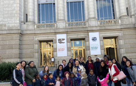 Child development students take preschoolers on field trip to Smithsonian Natural History museum