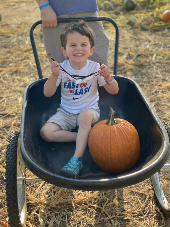 Friends+of+all+ages+enjoy+picking+pumpkins+at+local+patches+as+a+fun+fall+activity